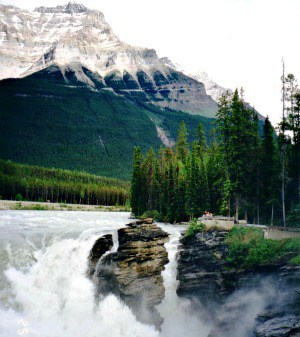 Bicycle touring Icefields Highway